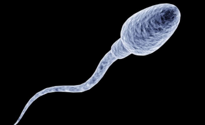 Stress and anxiety may be linked to sperm quality: study