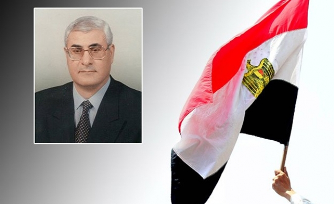 Egypt first to ratify D-8 Charter