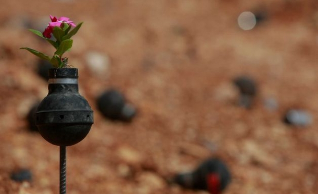 Palestinians use Israeli gas canisters as flower pots