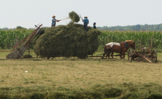 As US struggles with health reform, the Amish go their own way