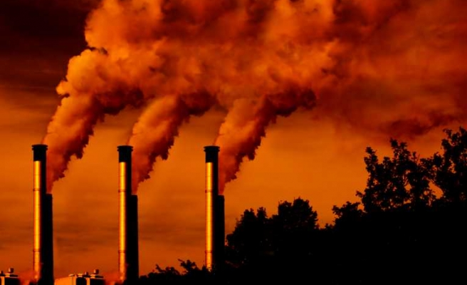 World must eliminate fossil fuel emissions
