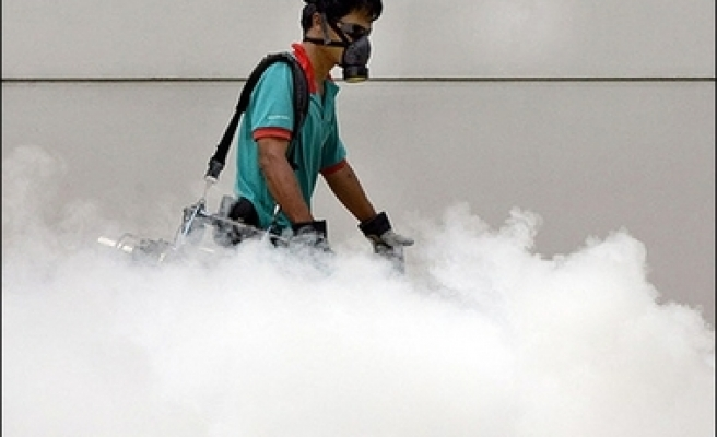 Dengue fever cases in China on the rise
