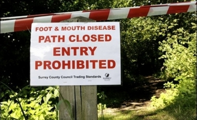 Further suspected case of foot and mouth disease