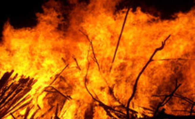 Forest fire in W Turkey destroys 350 hectares of forest