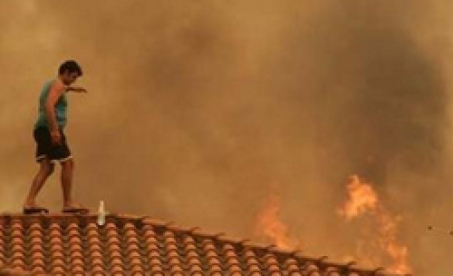 89 new fires in Greece, death toll at 61