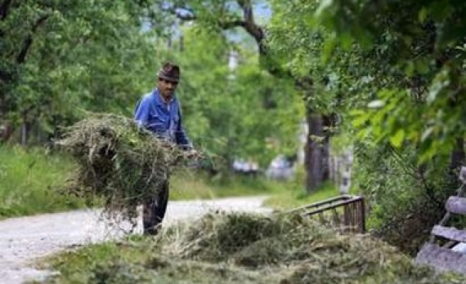Seven dead or missing as storms hit Romania