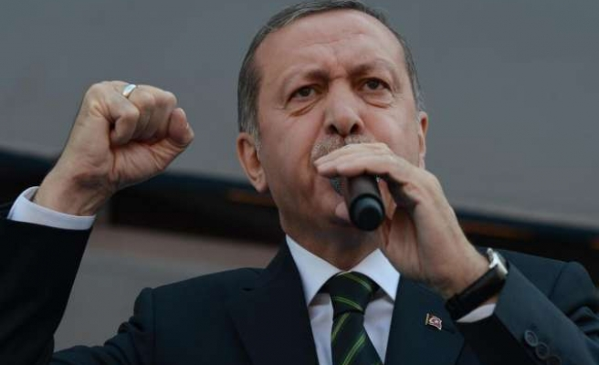 Turkey's PM gets party's support for presidential bid