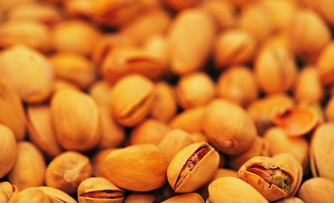 Turkey working to produce electricity from pistachios
