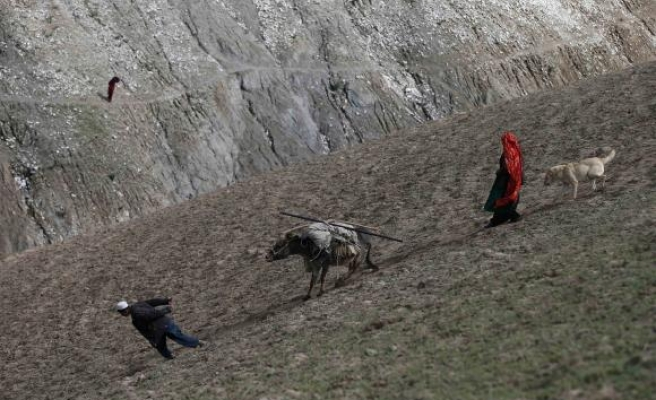 Land-grabbing by powerful rife in Afghanistan - watchdog