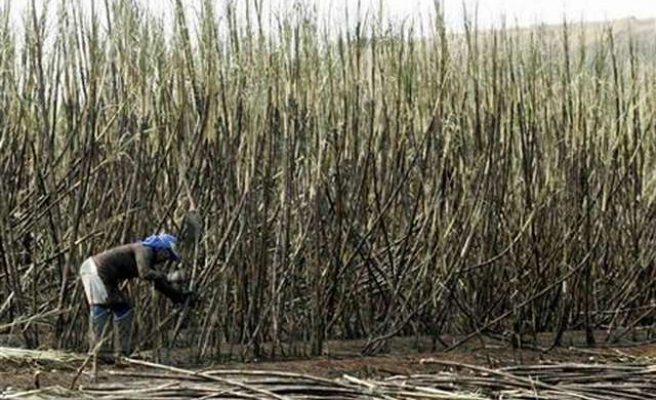 S. Africa's sugar workers call indefinite strike