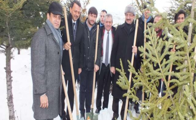 Trees planted in Ankara to commemorate Peshawar school victims