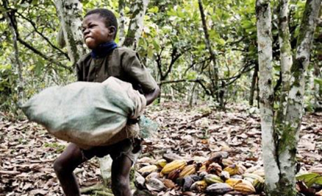 Ivory Coast frees 48 child slaves, arrests traffickers