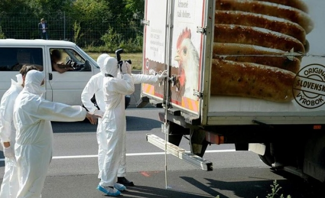 'More than 70' bodies in Austria truck tragedy