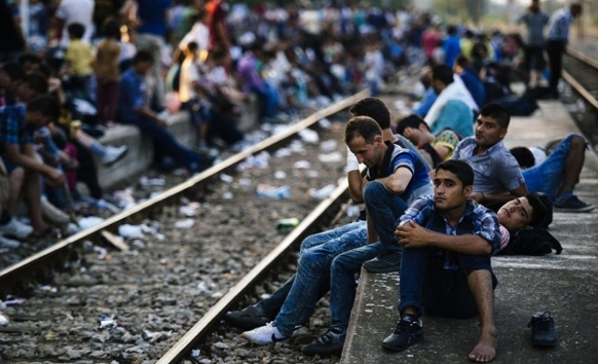 Swiss say will help Balkans deal with refugee crisis