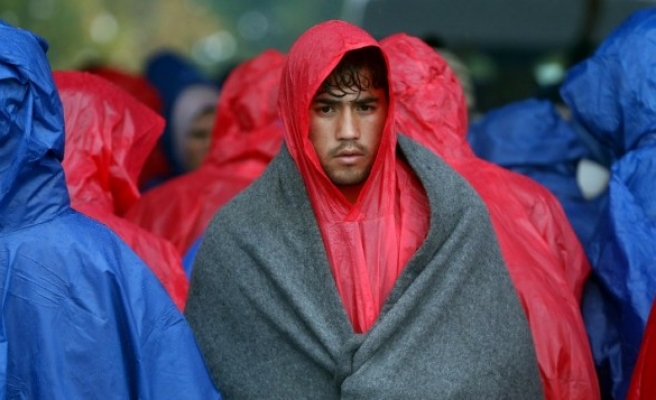 Slovenia to use army to 'manage' refugee flow