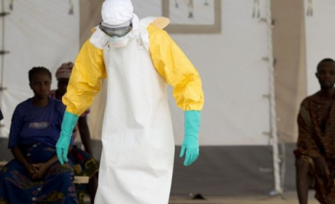 Past outbreaks of Ebola