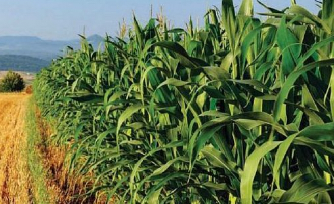 '$60 billion' pledged for Africa agriculture