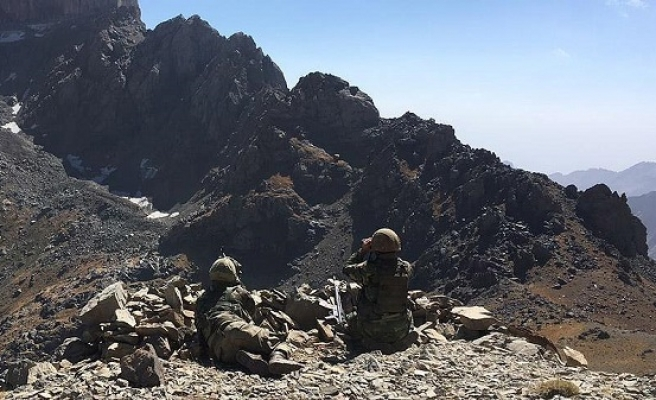 Turkish forces kill 4 PKK terrorists in southeast