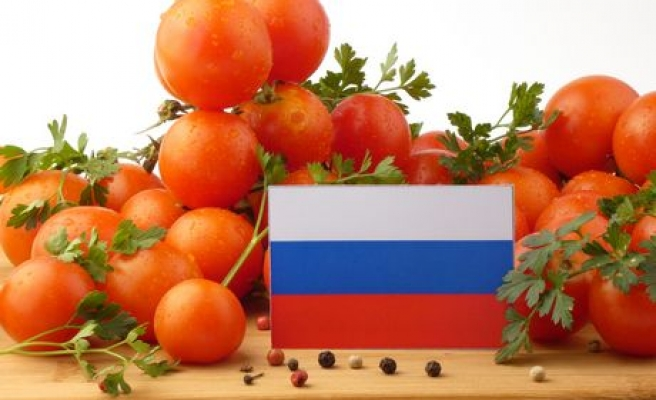 Turkish tomatoes not political issue: Envoy to Russia