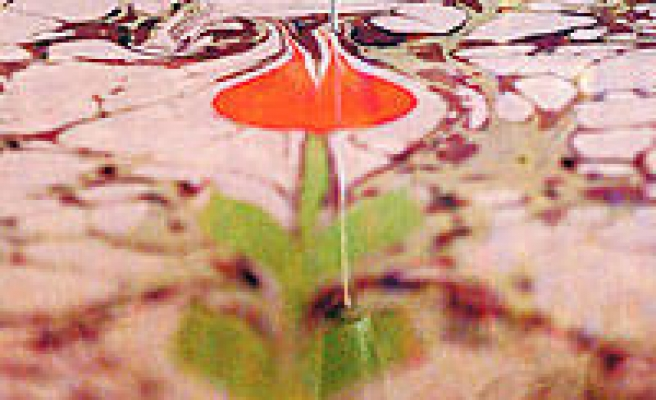 'Ebru' art: blossoming for 30 years