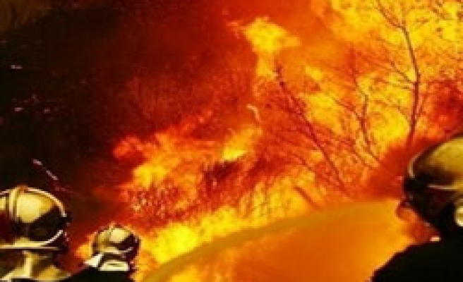 Wild fires likely to spread due to global warming