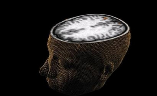 US therapy uses immune system to fight brain tumors