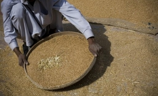 Pakistan sends wheat to Afghans to avert crisis