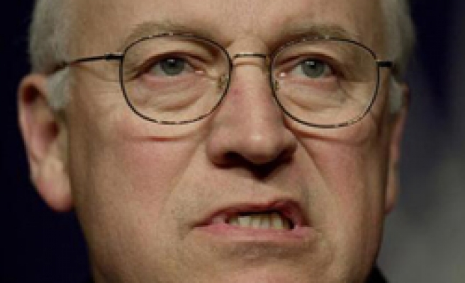 US authorizes subpoena of Cheney aide over torture