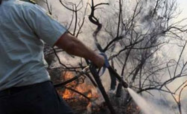 Forest fire threatening homes in Greek Cyprus