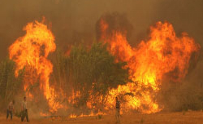 Turk firefighters tackle 5th day of forest blaze