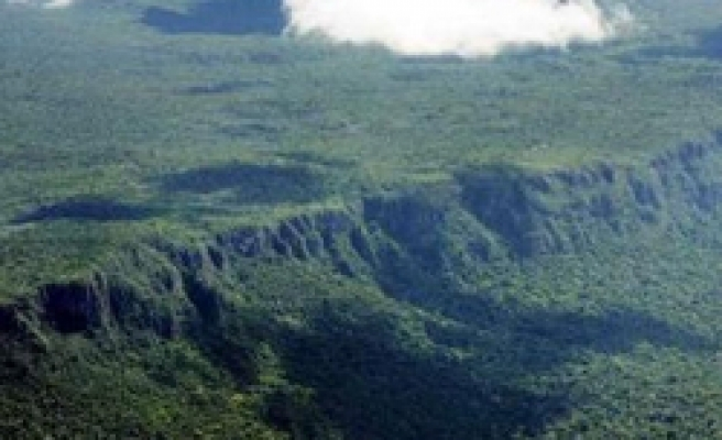 Untouched forests store 3 times more carbon -study