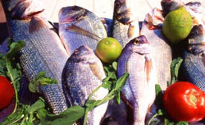 Mercury, oils from fish at odds in heart health: study
