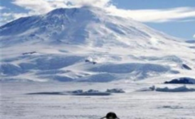 Antarctic bases turn to renewables - even solar