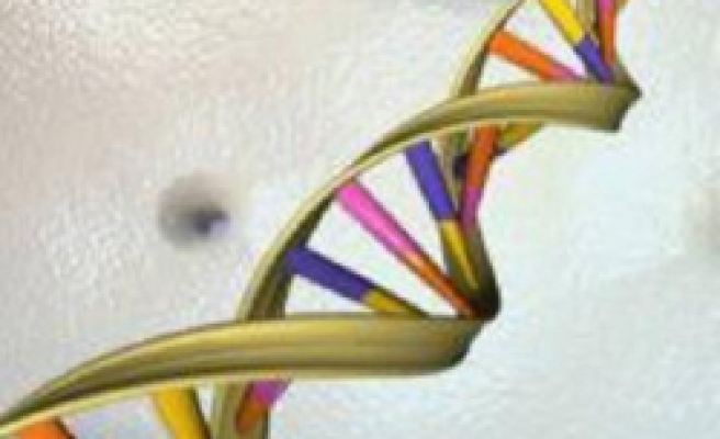 Scientists find new leukemia gene risk factors