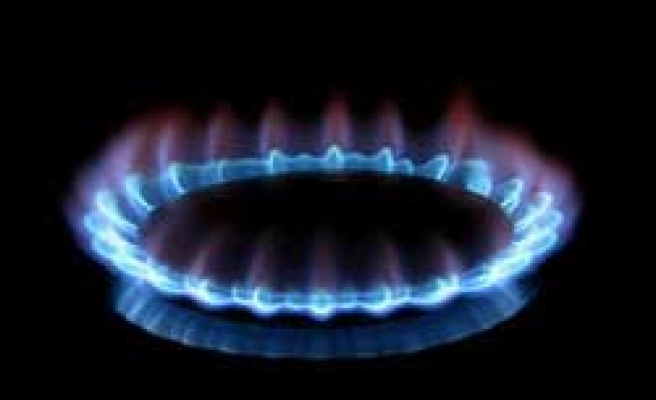 Turkish gov't plans 20 pc reduction in natural gas prices