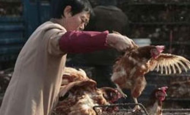 China issues bird flu alert after woman dies