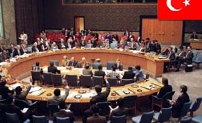 Turkey elected as UN committee chair on NGOs