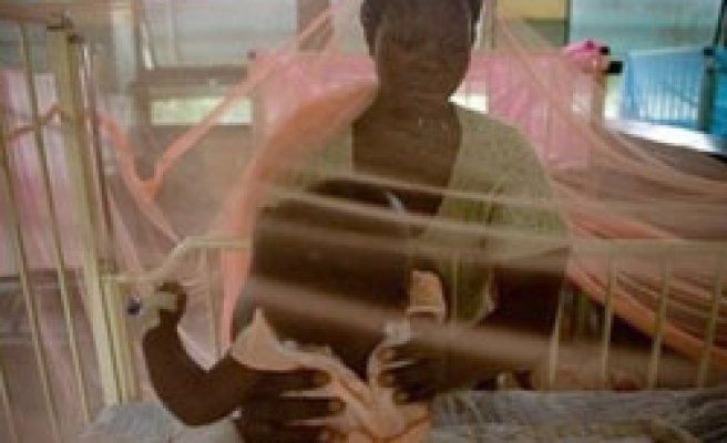 Gene map for malaria crop offers higher yield hope