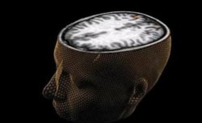 Scientists find way to block fearful memories