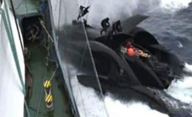 Japanese whalers 'sink protest boat'