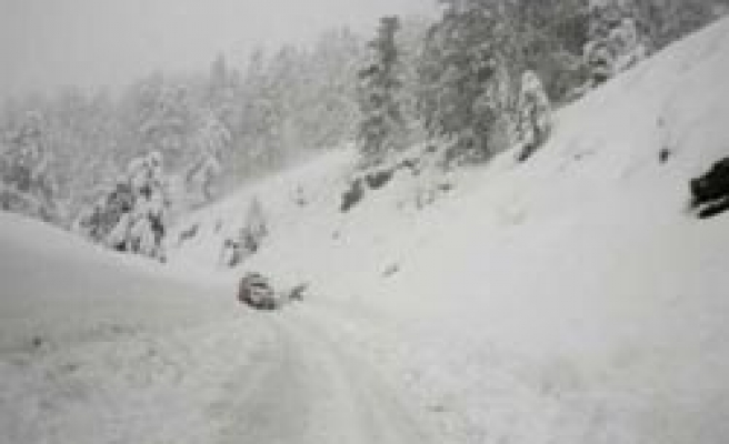 Pakistani villagers killed in avalanche