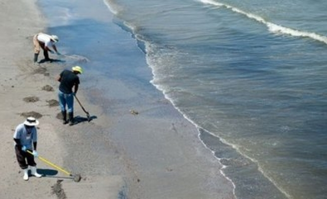 'Dead zone' in the Gulf of Mexico is the size of Connecticut