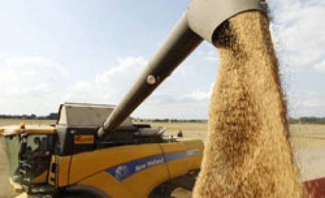 Russia says will not import grain in 2010