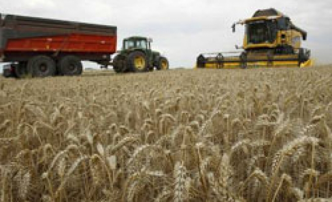 Russia may extend grain export ban as crops shrink