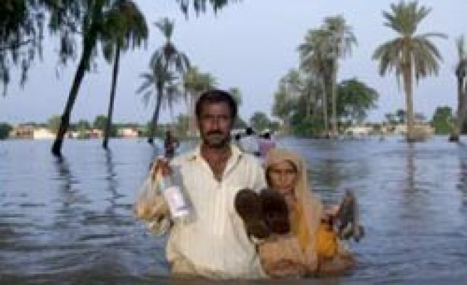 Crops recovery in flood-hit Pakistan costs billions: UN