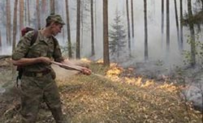 Radioactive fallout risk seen after fire near Russia's Chernobyl