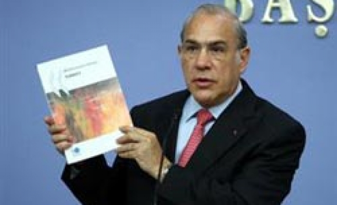 Turkey strongest country of OECD in 2010: Gurria