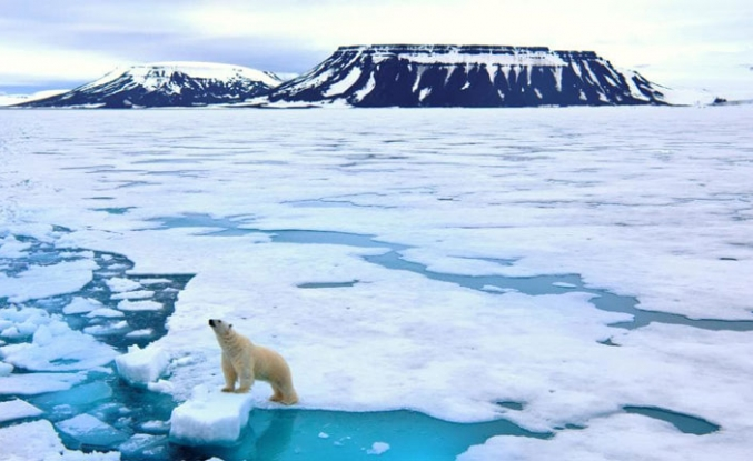 Cost of climate-linked disasters soars: UN