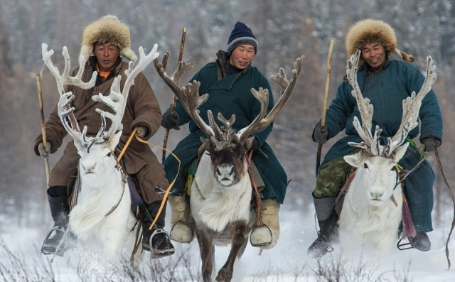 CNN - For thousands of years, the Dukha people, also known as the Tsaatans, have lived in the remote, deep forest of northern Mongolia. Moving from pasture to pasture every seven to 10 weeks, this tiny community of nomadic reindeer herders is one of the few remaining tribes of its kind.