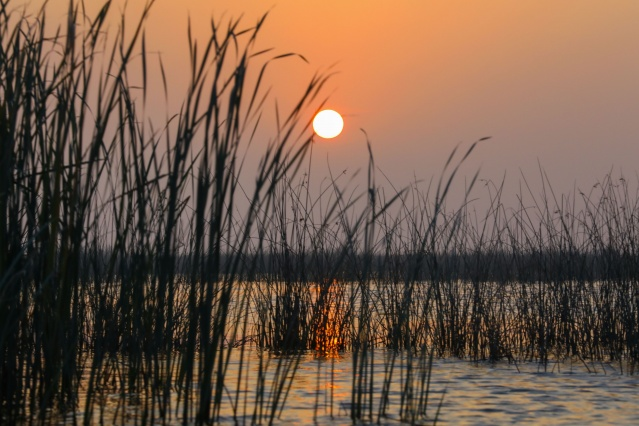 The Ahwar of southern Iraq -- also known as the Iraqi Marshlands -- draws global attention with its natural beauty.